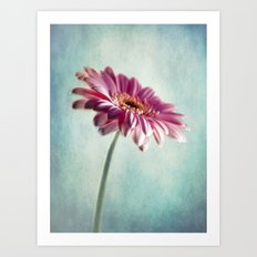A Shade Of Pink Art Print