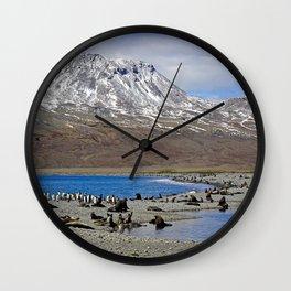 Fur Seals on the Beach Wall Clock