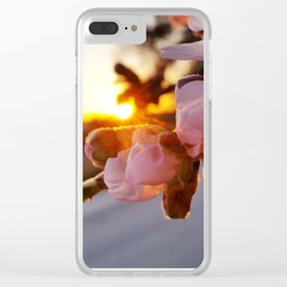 SPRING, SUN AND CITY Clear iPhone Case