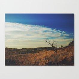 New Buffalo Tree Canvas Print