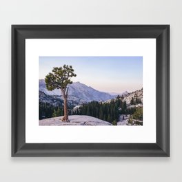Half Dome - Olmsted Point Framed Art Print