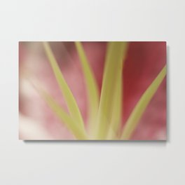 The Colors Metal Print