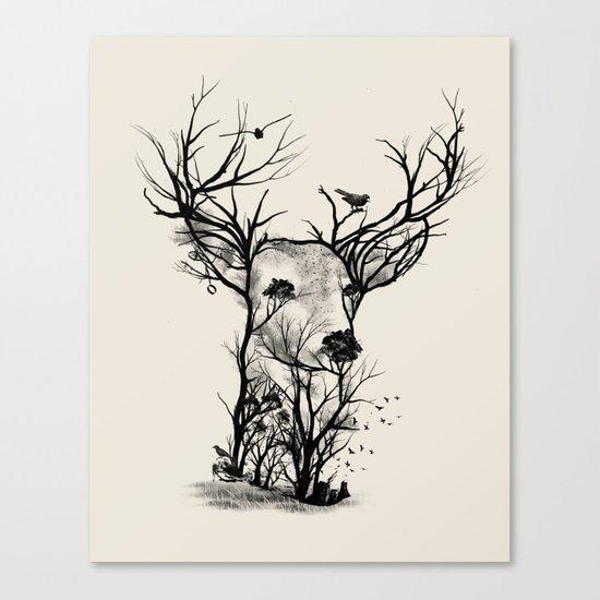 Wild Buck Canvas Print