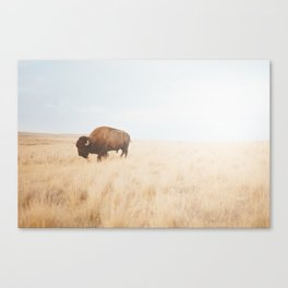 American Icon II Canvas Print