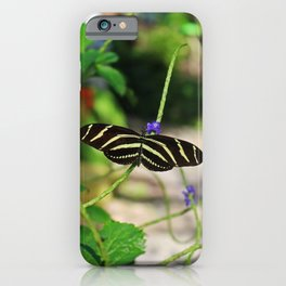 In the Company of Longwings iPhone Case