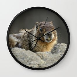 Rock Chuck Wall Clock