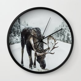 Moose in the wild Wall Clock