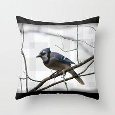 Winter Blue Jay Throw Pillow
