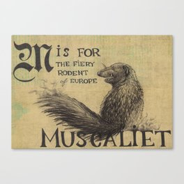 Alphabestiary M - Muscaliet Canvas Print