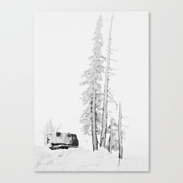 """ Timberline "" - Print Canvas Print"