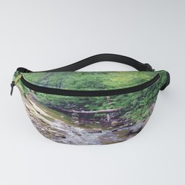Pisgah National Forest Fanny Pack