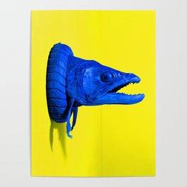 Colanimals, Catfish Poster