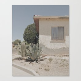 white walls, green cacti Canvas Print