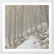 A Walk In The Forest Of Mist Art Print