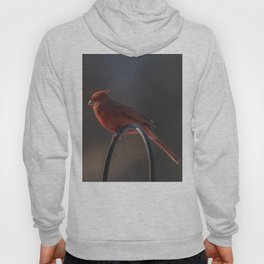 Bird On A Wire Hoody