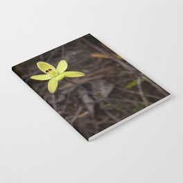 Lonely orchid Notebook