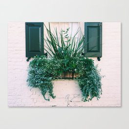 charleston green and white Canvas Print