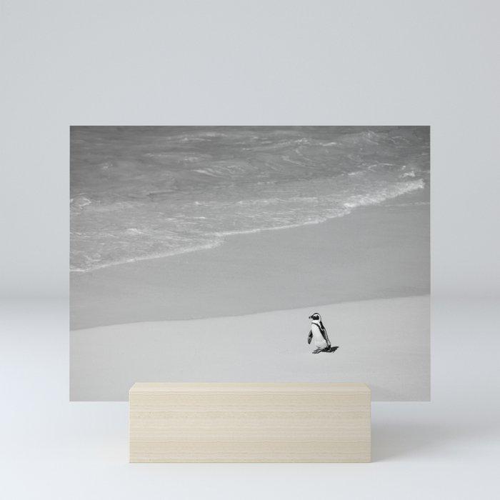 Lone African Penguin walking on beach Mini Art Print