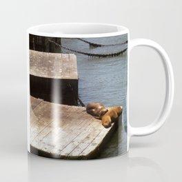 Sunbathing Seals Coffee Mug