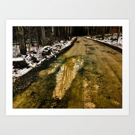 Mud Puddle on a Country Road Art Print