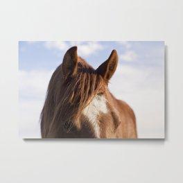 Modern Horse Print Metal Print