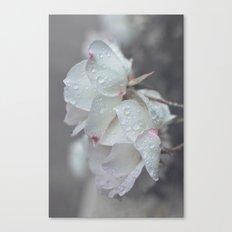 naivete Canvas Print