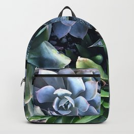 Contemporary, Sophisticated Succulents Backpack