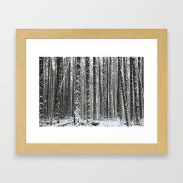 White trees-winter forest Framed Art Print