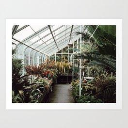 Volunteer Park Conservatory A-Side Art Print