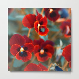 Red violas Metal Print