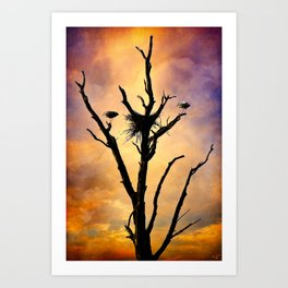 Nesting In Glory Art Print