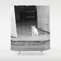 arab Shower Curtains featuring Arab kitty by Raleigh Tillman