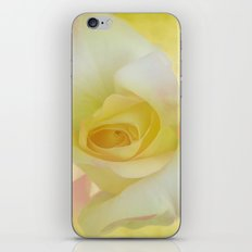 Painted Dream Rose iPhone & iPod Skin