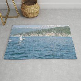 Dalmatian pelican landing Rug