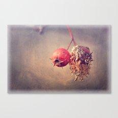 Still. Life. Canvas Print