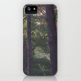 Early morning calm iPhone Case