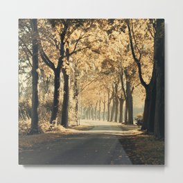 Autumn scenery #1 Metal Print