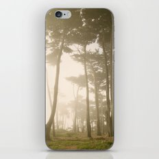 Fairy Forest, San Francisco iPhone & iPod Skin