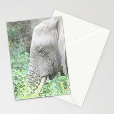 Dust bath Stationery Cards