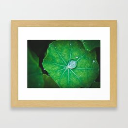 Water Veins  Framed Art Print