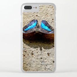 Blue Morpho Butterfly by Teresa Thompson Clear iPhone Case