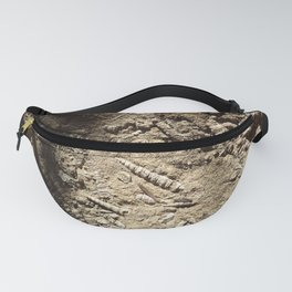 Spiral shell fossil rock Fanny Pack