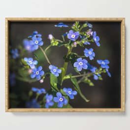 Forget-me-not Serving Tray