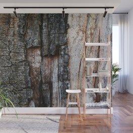 Tree Bark close up Wall Mural