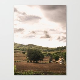 the fields of pai Canvas Print