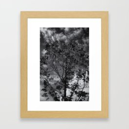 Gray Autumn Framed Art Print
