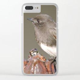Climb Every Fountain Clear iPhone Case