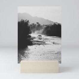 Black & White Arizona Wild Horse along the Salt River Mountains Mini Art Print