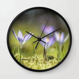 Crocus meadow Wall Clock