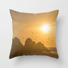 Sunset and Birds Flying Throw Pillow